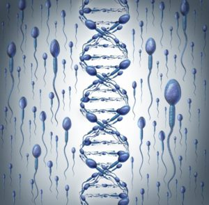 Epigenetics Gives Me a Better Chance of Having a Baby?